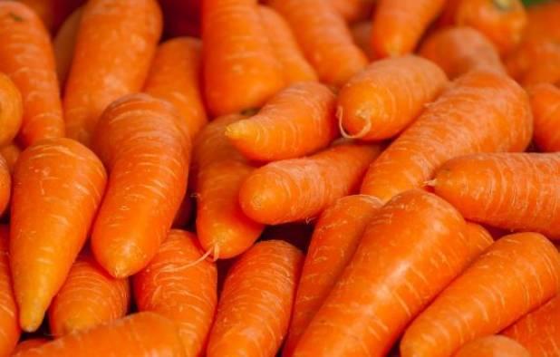 Морковь во время беременност