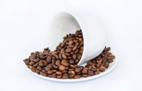 Kofein v sporte